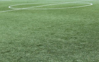synthetic-grass-1436614_960_720